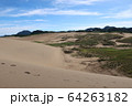 鳥取砂丘と緑 64263182