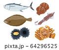 魚介イラストセット 64296525