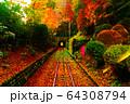 高尾山 リフト 景色 64308794