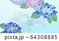 背景-紫陽花-梅雨 64308885