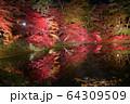 秋の公園 64309509