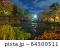 秋の公園 64309511