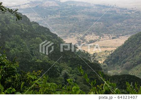 タンザニア・ンゴロンゴロで山道から眺める平原 64323407