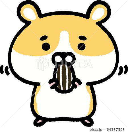 ひまわりの種を食べるゴールデンハムスター 64337593