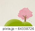 さくら-植物 64338726