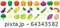 野菜アイコンセット 64343582