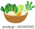 冬野菜のカゴ盛り 64345545