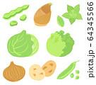 春野菜のセット 64345566