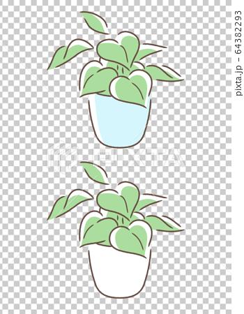 小さめの観葉植物 64382293