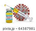Vaccine and syringe 64387981