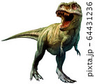 Tyrannosaurus rex dinosaur from the Cretaceous era 3D illustration 64431236