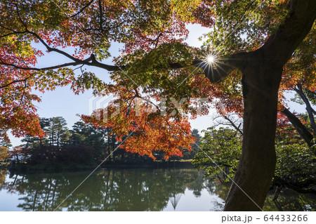 秋の金沢旅行 紅葉真っ盛りの兼六園・霞ヶ池 64433266