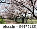 井草森公園 64479185