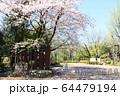 井草森公園入口 64479194