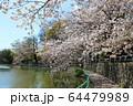 武蔵関公園 64479989