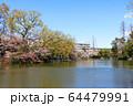 武蔵関公園 64479991