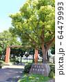 井草森公園入口 64479993