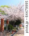 井草森公園入口 64479995