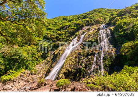 春の新緑に映える大川の滝日本の滝百選、国立公園屋久島(4月) 64507038
