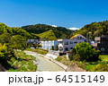 東京都 新緑の高尾山 64515149
