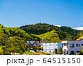 東京都 新緑の高尾山 64515150