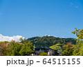 東京都 新緑の高尾山 64515155