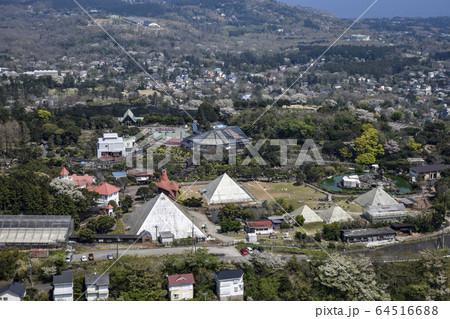 大室山から見た伊豆シャボテン公園 64516688