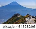 南アルプス・鳳凰三山・観音岳から見る富士山と薬師岳 64523206