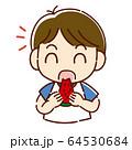 スイカを食べる男の子 64530684