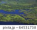 アマゾン川の風景 64531738