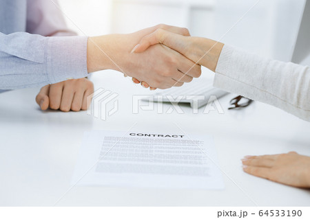 Casual dressed businessman and woman shaking hands after contract signing in sunny office. Handshake concept 64533190