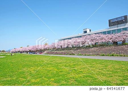 遠賀川 64541677