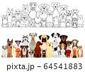 犬たちの大型グループ 線画 カラー 64541883