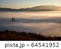 雲海 64541952