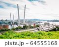 Zolotoy bridge and Golden horn bay in Vladivostok, Russia 64555168