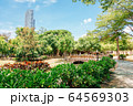 Central Park nature view in Kaohsiung, Taiwan 64569303