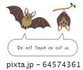コウモリを食べないで 64574361
