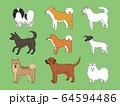 日本犬 64594486