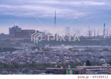 《東京都》自粛ムード・霧に包まれた東京 64599412