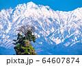 《富山県》雨晴海岸・女岩と立山連峰 64607874