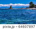 《富山県》雨晴海岸・女岩と立山連峰 64607897