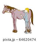 乗馬の手描き風イラスト 手入れ 64620474