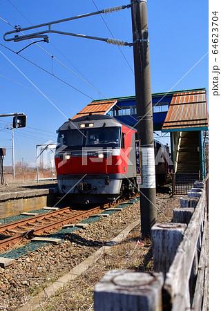 春の北海道白老町JR社台駅を通過する貨物列車の風景を撮影 64623704