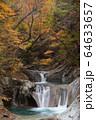紅葉の西沢渓谷 64633657