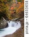 紅葉の西沢渓谷 64633658