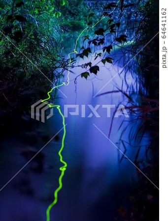 ゲンジホタルの飛行と小川の幻想的な風景。合成なし、長時間露光作品です。貴重画像 64641162