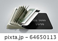 concept of cash withdrawal payment by card dollar 64650113