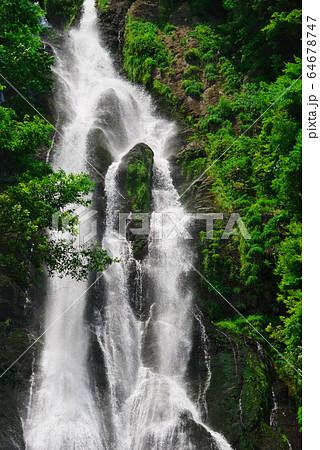 新緑の断崖に響く瀑布:神庭の滝(岡山県真庭市神庭) 64678747