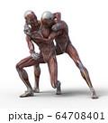 男性 解剖 筋肉 3DCGイラスト素材 64708401