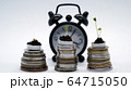 Time is money concept, plants growing on coins with clock on background, fast money grow, increase 64715050